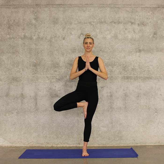 Yoga therapy mindbodysymphony